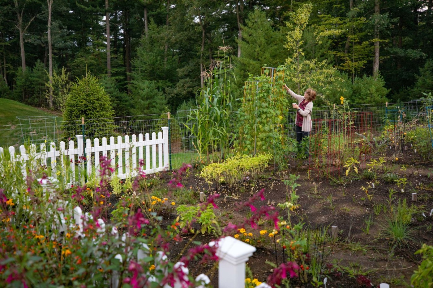 Highcroft gardens and woman taking care of plants